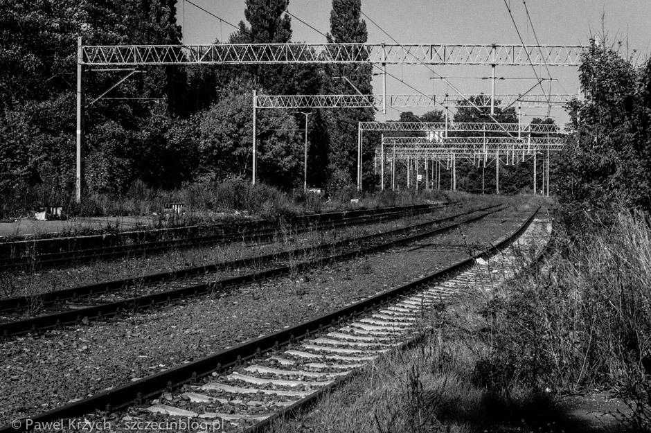 Okolice torów kolejowych są cały czas strzeżone. Właśnie tędy przybywają do miasta zmutowane istoty, które opanowały wiele miast w ciągu roku po Incydencie.
